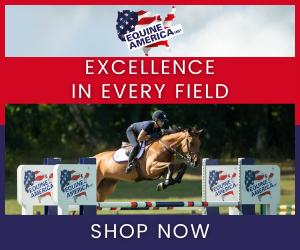 Equine America (Lancashire Horse)