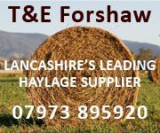 Forshaw 2020 (Lancashire Horse)