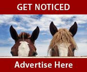 Get Noticed (Lancashire Horse)