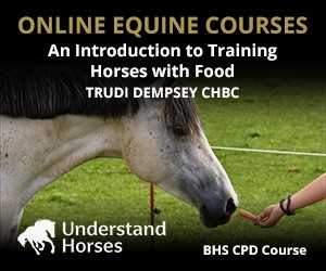 UH - An Introduction To Training Horses With Food (Lancashire Horse)
