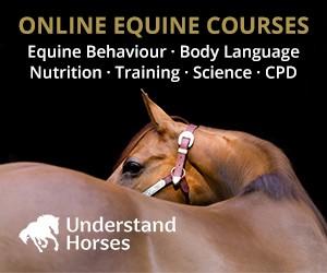 Understand Horses (Lancashire Horse)